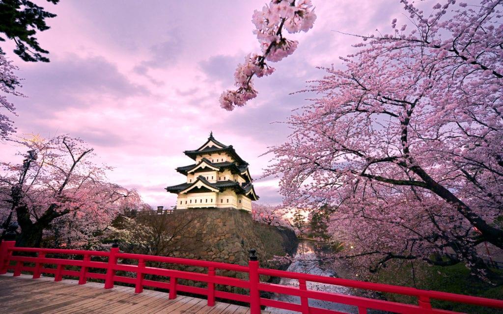 Туры в Японию на цветение сакуры