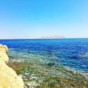 Горящие туры в Египет, Grand Oasis