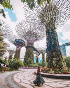Туры в Сингапур. Новогодние круизы в Азию