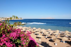 Domina Coral Bay Oasis 5 Шарм Эль Шейх