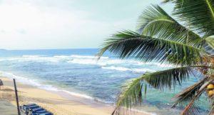 Шри Ланка из Киева Hansa Surf Hotel (ex. Polina Beach Resort)