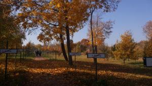 Экскурсионные туры в зону отчуждения Чернобыльской АЭС.