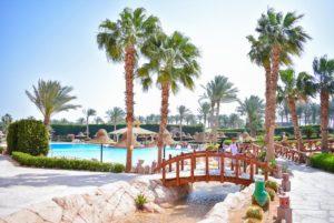 Новый Год в Шарме. Parrotel Aqua Park Resort