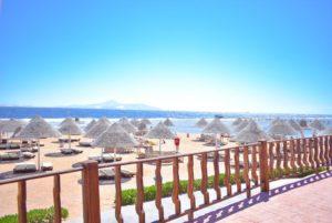 Туры в Египет на Новый Год. Parrotel Aqua Park Resort