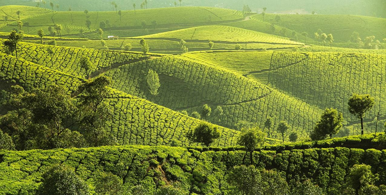 природа Индии, туризм