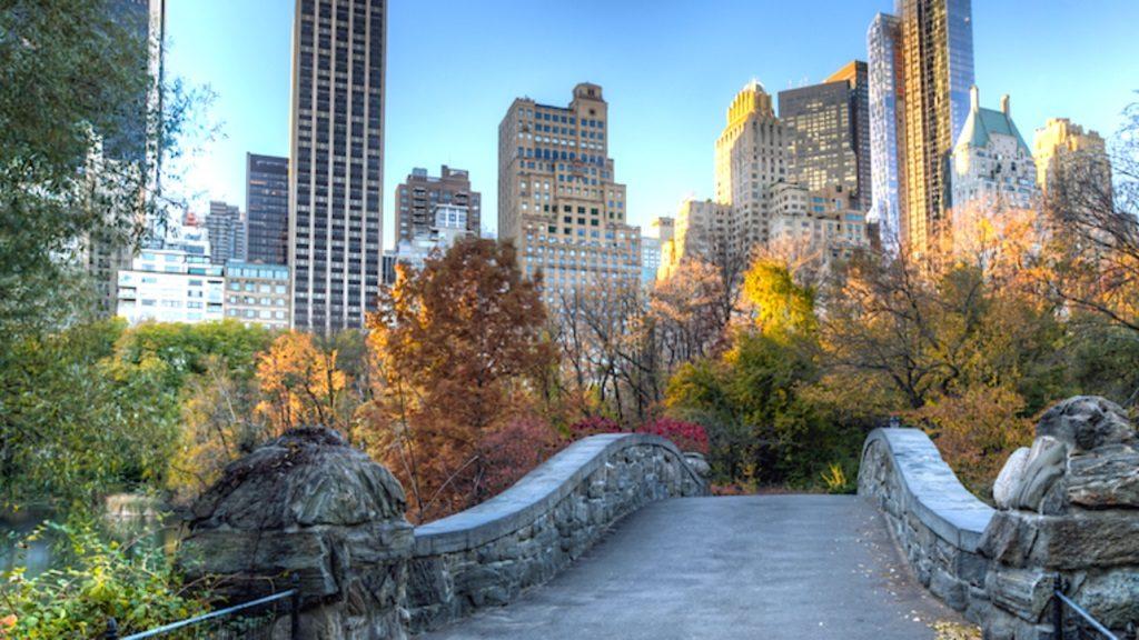 Центральный парк (Central Park)