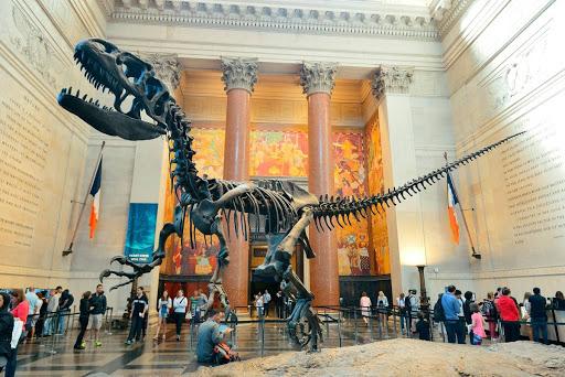 Американский музей естественной истори (American Museum of Natural History)